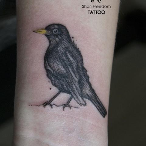 tetování kos