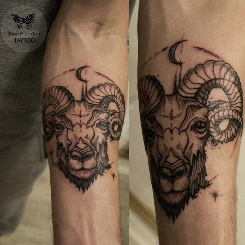 tetování berana na ruce