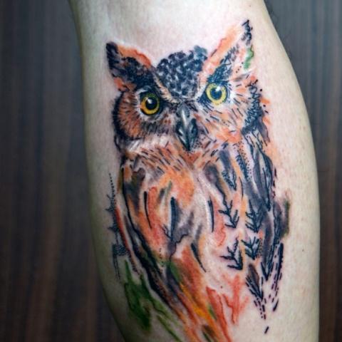 barevné tetování sovy technikou akvarel / colour tattoo of owl by technique aquarelle